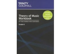 Buy EXAMINATION MUSIC - Theory  Trinity Guildhall Online in India