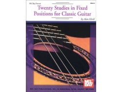Buy FRETTED STRINGS - Classical Guitar Online in India