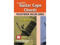 Buy FRETTED STRINGS - Guitar Chords  Arpeggios Online in India