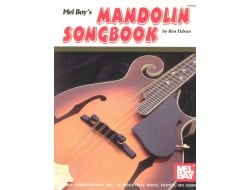 Buy FRETTED STRINGS - Mandolin Online in India