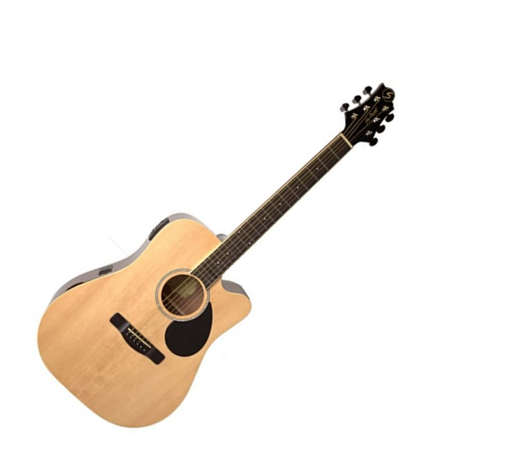Buy Acoustic Guitar Online in India at Best Prices | Furtados